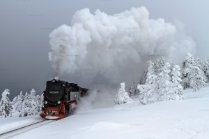 Brockenbahn mit 99 7236-5 in der Brockenspirale // Brocken Railway with 99 7236-5 in the Brocken loop